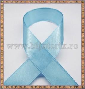 Panglica satin bleu 2,5cm - 1m