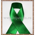 Panglica satin verde 2,5cm - 1m