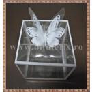 Cutie acetofan - margine alba cu fluturas 6,5x7x7cm