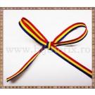 Panglica tricolor 0.6cm - 1m
