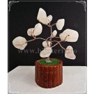 Copacel Feng shui - Cuartz roz - ghiveci mic